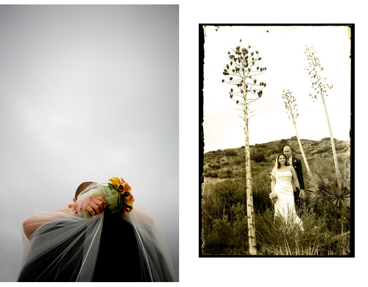 Clinton-james-photography-destination-wedding-photography-california-pasadena-Caltech-Atheneum-wedding-Seattle-bellingham-northwest-artistic-wedding-photojournalism-outdoor-ceremony-tangelo-love-fashion-trash-the-dress-mountains-lindsey_blog_9