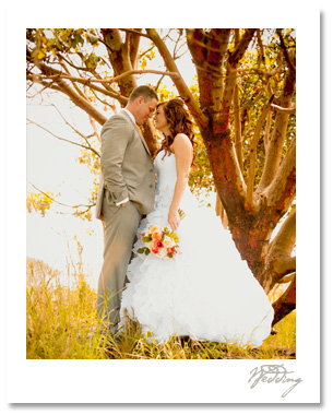 Kenny and Tessa's picture perfect wedding at Roche Harbor