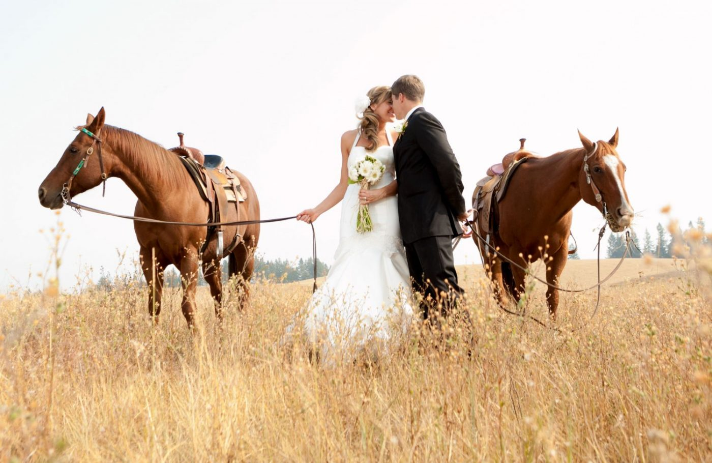 bride-groom-with-horses-in-grassy-field-spokane-rustic-wedding