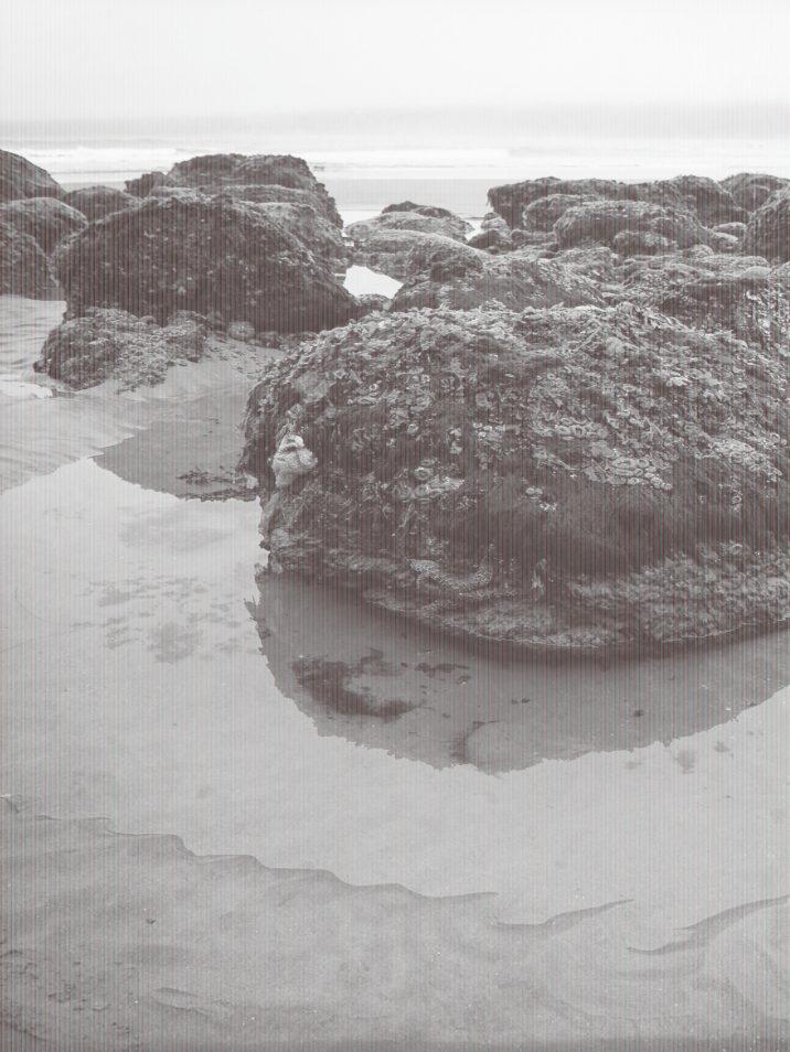 pacific-northwest-photo-fine-art-landscape-shi-shi-washington-coast_0007pg