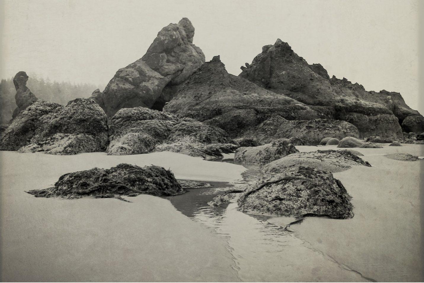 pacific-northwest-photo-fine-art-landscape-shi-shi-washington-coast_0009