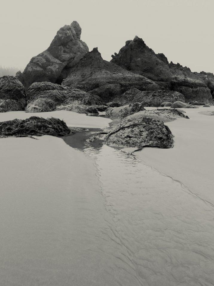 pacific-northwest-photo-fine-art-landscape-shi-shi-washington-coast_0010