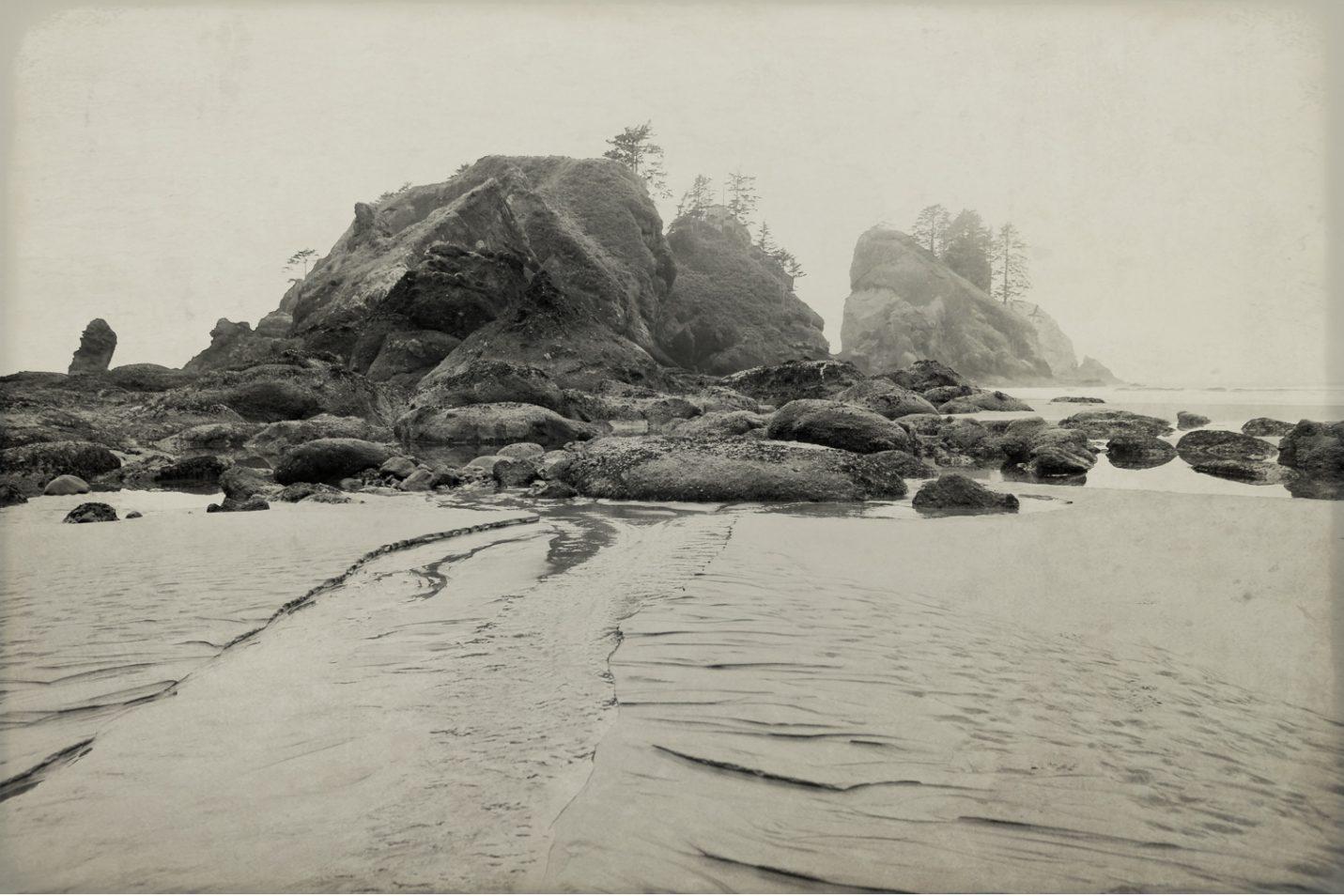 pacific-northwest-photo-fine-art-landscape-shi-shi-washington-coast_0011