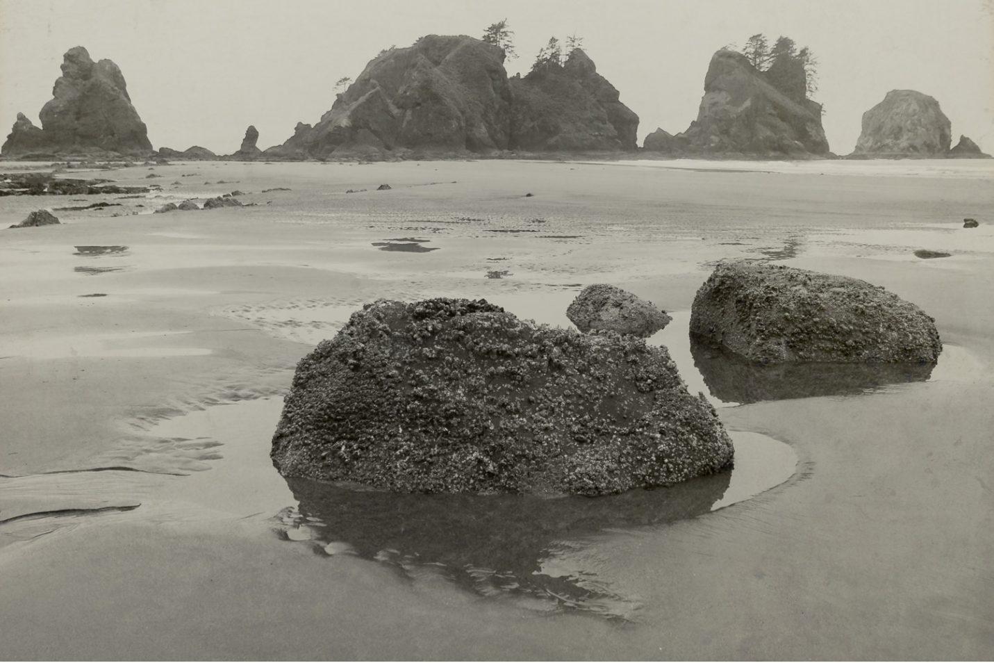 pacific-northwest-photo-fine-art-landscape-shi-shi-washington-coast_0016